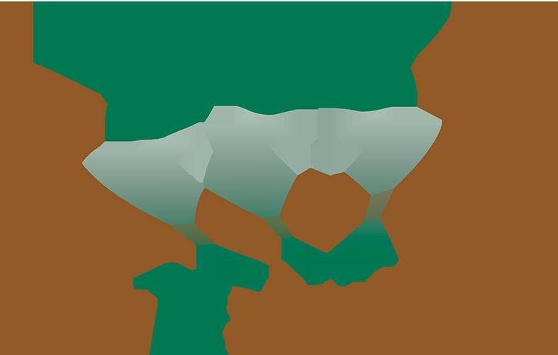 50vital4work